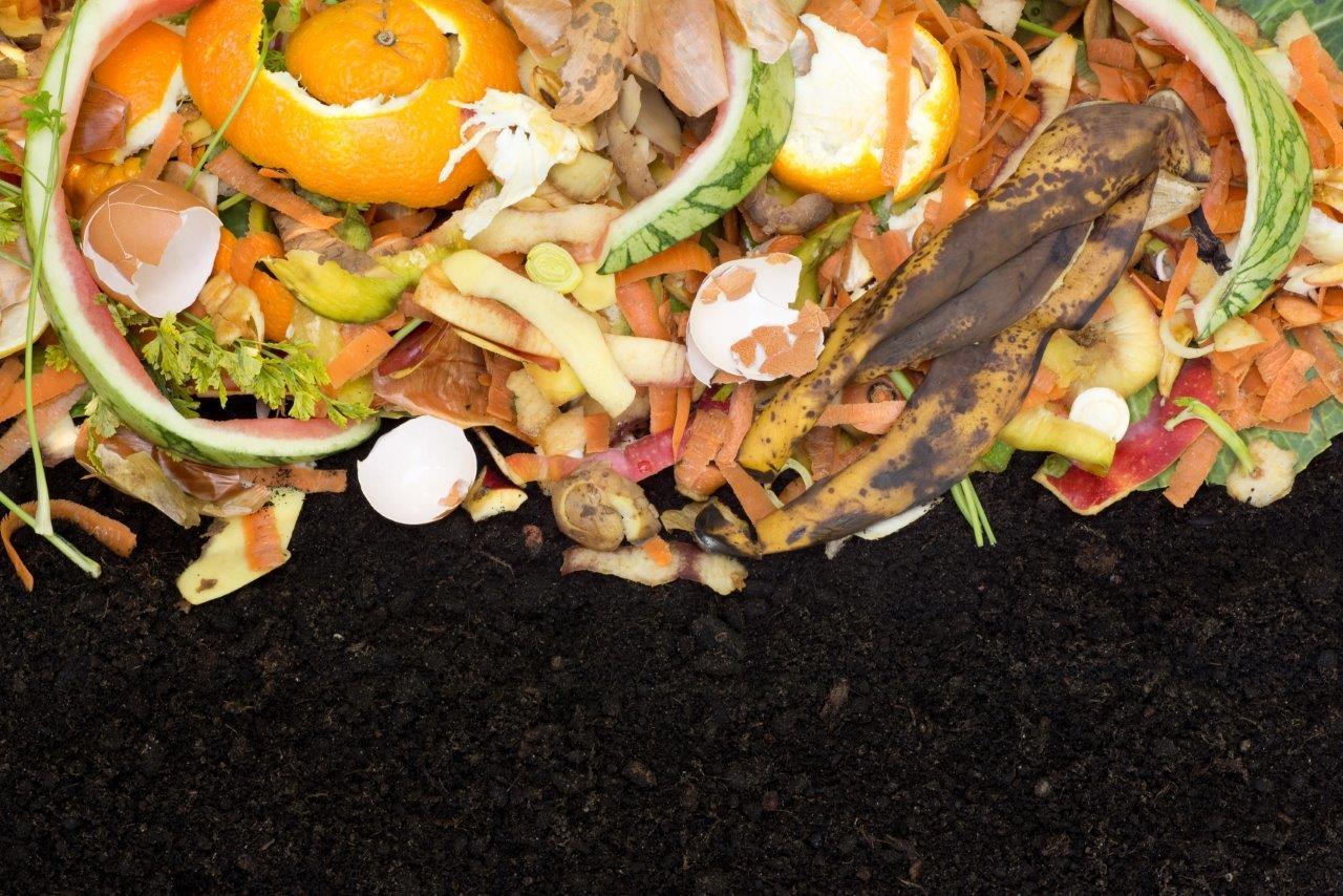 Proste segregowanie i kompostowanie domowych odpadów organicznych jest możliwe!